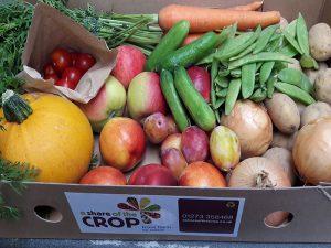 July Fruit & Veg Box