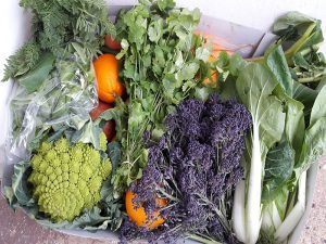 March Fruit & Veg Box