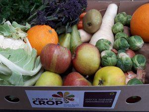 November Fruit & Veg Box