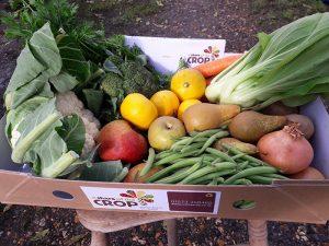 October Fruit & Veg Box